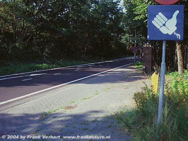 vanuit eindhoven naar a61